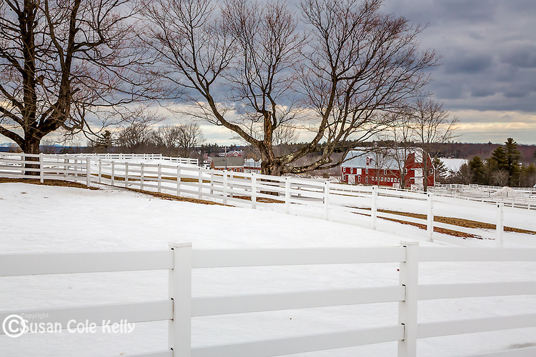 Winter scene at Pineland Farms in New Gloucester, Maine, USA