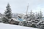 Old marooned ship among trees, Haines, Alaska, wintertime.