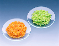 COBALT AND IRON (TRANSITION METAL) ION COLORS<br />