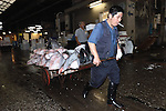"""An employee at the world's biggest fish Market in Tsukiji, Tokyo uses a wooden trolley to carry large tuna auctioned at the market to a seller. More than 2,300 tons of fish -- about one-third of the total consumed in Japan -- passes through Tsukiji each day and offers more than 450 varieties of marine products. The market, which dates back almost 75, will move to a high-tech site on a man-made island in Toyosu, which is well-documented as being contaminated with benizine. Not that Tsukiji is much better off -- many buildings in the aging site are stuffed with asbestos. """"Choose your poison,"""" says one Tsukiji official. The new site, which the government plans to be readied by 2012, will be significantly larger, with more room for off-loading and for sellers to display their goods. The current location, says one official, is too cramped and collisions between motorised carts and pedestrians means accidents occur almost daily. Meanwhile, with fish sales down, it is becoming more difficult to justify Tsukiji's prime location and property developers are keeping a close watch on Tsukiji land, which is just a few blocks from the ritzy Ginza district of Tokyo, where per-meter land prices are the highest in the world...The move to the new Toyosu location, meanwhile, has been at the center of heated debate -- clean-up operations alone are estimated to cost ¬?67 billion (around US$660 million), with a further ¬?450 billion to build a new marketplace. Big wholesalers favour the move, but the 1,600-plus merchants mostly are against it. Yoshiharu Kiku, a Tsukiji storeowner who began working at the market 60 years ago, expresses bewilderment at the plans, saying that the name Tsukiji itself has become synonymous with the world's best and most eclectic selection of fish. """"This place has a long tradition. Why break it and start from scratch all over again?"""" he says."""