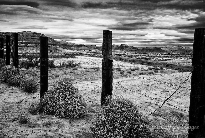 Tumbleweeds piled against a fence in the Lybrook badlands in northwestern New Mexico.