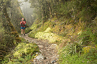 Woman tramper on Routeburn Track, Fiordland National Park, Southland, South Island, UNESCO World Heritage Area, New Zealand, NZ