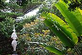 fleche faitière - ile des pins