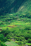 Taro fields and farm houses in Waipio Valley, Hamakua Coast, The Big Island, Hawaii