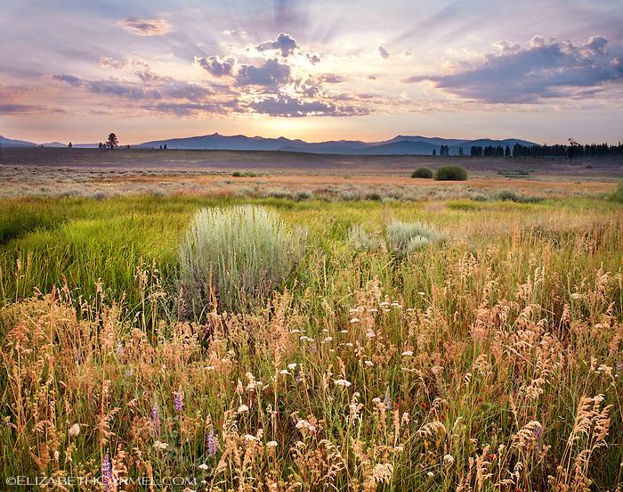 Summer Sunset, Martis Valley