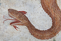 Fresco detail of the head of the snake god Agathodaimon, on the Lararium, a shrine dedicated to the guardian spirits of the household, in the Casa del Criptoportico, or House of the Cryptoporticus, Pompeii, Italy. The lararium adjoins a peristyle garden and has a lower black border painted with plants and flowers. The house is one of the largest in Pompeii and was owned by the Valerii Rufi family and built in the 3rd century BC. It takes its name from the underground corridor or cryptoporticus used as a wine cellar and lit by small windows. Pompeii is a Roman town which was destroyed and buried under 4-6 m of volcanic ash in the eruption of Mount Vesuvius in 79 AD. Buildings and artefacts were preserved in the ash and have been excavated and restored. Pompeii is listed as a UNESCO World Heritage Site. Picture by Manuel Cohen