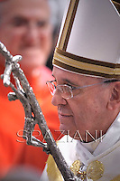 Pope Francis  at the consistory in the St. Peter's Basilica at the Vatican on February 22, 2014.
