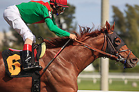 Animal Kingdom with jockey John Velazquez winning his 2012 debut at Gulfstream Park, Hallandale Beach Florida.