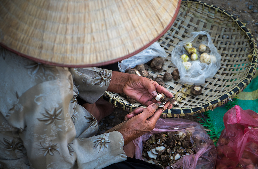 VIET HUNG, VIETNAM - CIRCA SEPTEMBER 2014:  Vietnamese woman in a local market from the Viet Hung village  in Vietnam