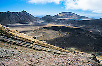 Tongariro Crossing Track among living volcanes - Tongariro National Park, Central Plateau, New Zealand