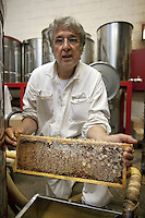 Switzerland. Canton Ticino. Capolago. Alberto Bianchi is a beekeeper and an organic farmer (with the label Bio Suisse). He is making honey by using a honey extractor. Bees cover the filled in cells of the honeycombs with wax cap that must be removed before centrifugation. A honey extractor extracts the honey from the honeycombs without destroying the comb. A beekeeper (or apiarist) keeps bees in order to collect honey and other products of the hive (including beeswax, propolis, pollen, and royal jelly). 5.06.12 © 2012 Didier Ruef