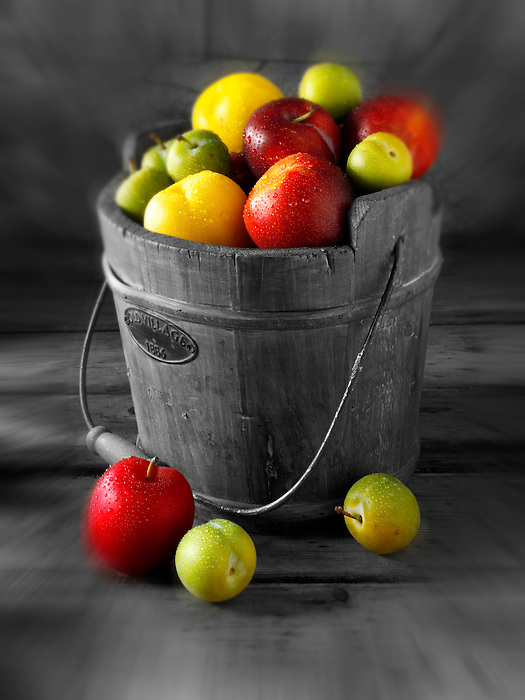 Mixed red, yellow and green plums