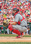 29 May 2016: St. Louis Cardinals catcher Eric Fryer in action against the Washington Nationals at Nationals Park in Washington, DC. The Nationals defeated the Cardinals 10-2 to split their 4-game series. Mandatory Credit: Ed Wolfstein Photo *** RAW (NEF) Image File Available ***
