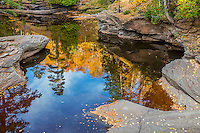 Porcupine Mountains Wilderness State Park, MI: Reflections of a fall foreset in calm waters of the Presque Isle River