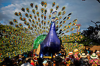 """silleteros carries a real turkey decorate with flowers while he attends the traditional """"Silletero"""" parade during the Flower Festival in Medellin August 7, 2012. Photo by Eduardo Munoz Alvarez / VIEW."""