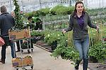 Foto: VidiPhoto<br /> <br /> ROSSUM - Op de eerste dag zaterdag dat plantenkwekerij De Westerbouwing in Rossum de particuliere verkoop van ruim een half miljoen planten en stekjes startte, was het zoals voorspeld direct behoorlijk druk. De afgelopen maanden zijn een half miljoen kleine stekjes opgepot voor de consumentenverkoop, die slechts zes weken duurt. Het bedrijf verkoopt daarnaast nog eens 2 miljoen frambozenstekjes en is proefkweker voor 5000 soorten frambozen. Klanten hierlden zaterdag een stormloop op het uitzonderlijke grote assortiment van 400 verschillende soorten planten, 70 soorten kruiden en 50 soorten groenten. Een diversiteit die &quot;enorm hebzuchtig maakt&quot;, aldus de liefhebbers. Volgens eigenaar Geert de Weert is tuinieren weer enorm populair, met name het eten uit eigen tuin.  Klanten uit heel Nederland reizen af naar de Bommelerwaard om daar unieke soorten planten op de kop te tikken die nergens anders verkrijgbaar zijn.