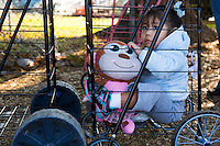 A small girl snuggles inside a food cart as her family waits in line for food assistance in Sangar, CA.