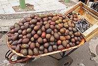 Wheelbarrow full of avacados in downtown San Salvador, El Salvador