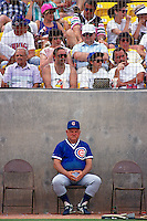 CHANDLER, AZ - Chicago Cubs Manager Don Zimmer watches during a spring training game against the Milwaukee Brewers at Compadre Stadium in Chandler, Arizona in 1991. Photo by Brad Mangin