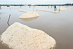 Commercial salt production at the Ada Songor Salt Project.