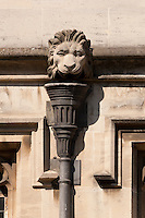 Lion Gargoyles above a drain below Magdalen Great Tower, part of Magdalen College, Oxford University, England.
