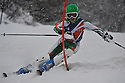 4/01/2014 BSA slalom boys race 2