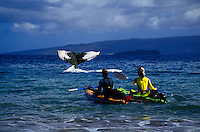 This kayaking couple (MR) were photographed just off the coast of Maui, as was the humpback whale Megaptera novaeangliae.  The two were then digitally combined in a computer.  Hawaii