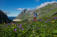 Female hiker hikes towards Horseid beach, Moskenesøy, Lofoten Islands, Norway