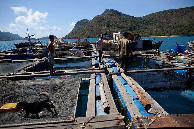 Fishermen on their floating fishery in front of Tre Lon Island, part of the Con Dao Islands in Vietnam. The 16 mountainous islands and islets are situated about 143 miles southeast of Ho Chi Minh City in Vietnam, in the South China Sea. Photo taken Thursday, May 5, 2010...Kevin German / LUCEO For the New York Times