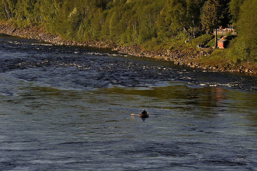 Salmon fishing,Gaula,Norway