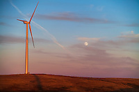 The September 28, 2012 Harvest Moon, with a wind turbine from the Wintering Hills Wind Farm near Drumheller, Alberta. Taken as part of a time lapse movie sequence. Canon 5D MkII and 28-105mm lens, automatic exposure.