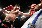 January 27, 2007: Jorge Arce vs Julio Ler