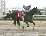 Parx Racing Win Photos 2014