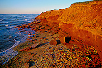 Prince Edward Island National Park at Greenwich, Prince Edward Island, Canada