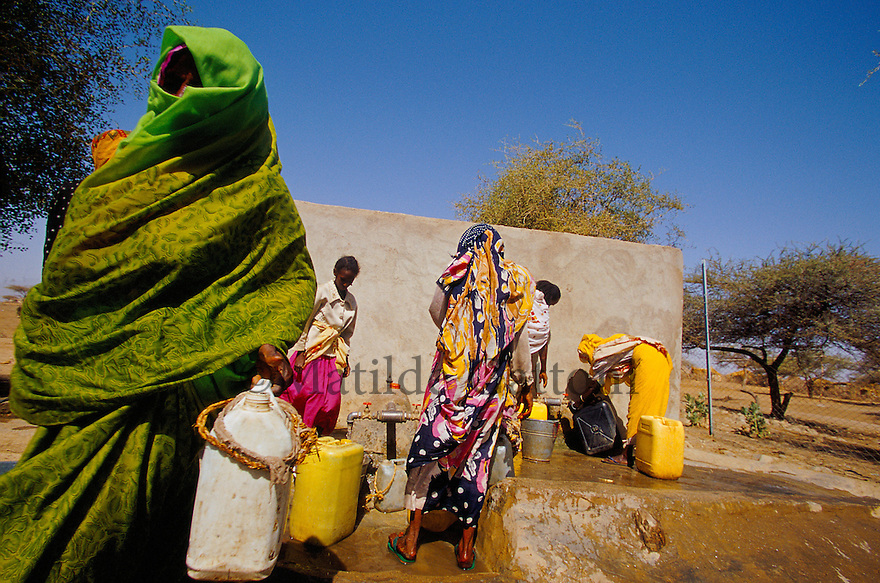 Eritrea - Gash Barka - Women filling the tanks at the nearest water well from their village, 3 hours walk. As a result of 30 years of war for independence against Ethiopia (from 1961 to 1991) and another 3 years from 1997 to 2000, there are 50,000 Eritreans currently living in internally displaced (IDP) camps throughout the country. These IDPs have fled three times in the last 10 years, each time because of renewed military conflict. They lived in relatives' homes when lucky enough, but mostly, the fled to the mountains, where they attempted to do what Eritreans do best, survive. Currently there is no Ethiopian occupation in Eritrea, but landmines prevent the IDPs from finally going home. .It is estimated that every Eritrean family lost two or three members to the war which makes the reality of the current emergency situation even more painful for Eritreans worldwide. Currently, the male population has been decreased dramatically, affecting the most fundamental socio-economic systems in the country. Among the refugee population, an overwhelming majority of families are female-headed, severely affecting agricultural production. For, IDPs in particular, 80% of households are female-headed..The unresolved border dispute with Ethiopia remains the most important drawback to Eritrea's socio-economic development, as national resources (human and material) continue to be prioritized for national defense. Eritrea is vulnerable to recurrent droughts and variable weather conditions with potentially negative effects on the 80 percent of the population that depend on agriculture and pastoralism as main sources of livelihood. The situation has been exacerbated by the unresolved border dispute, resulting in economic stagnation, lack of food security and increased susceptibility of the population to various ailments including communicable diseases and malnutrition. .
