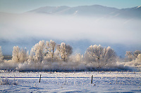 Winter's grip as it freezes the Heber Valley in the Wasatch Mountain range of Utah on an early Winter morning.