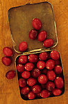 Close up from above of red cranberries lying in small brass tin and overflowing to lid and onto scratched chopping board