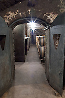Oak barrel aging and fermentation cellar. Domaine Bertagna, Vougeot, Cote de Nuits, d'Or, Burgundy, France