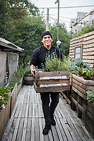 23 year old Irving Chavez Playas who works at Porco Rosso restaurant tends to it´s vegetable garden. The roof-top vegetable garden at restaurant Porco Rosso in Colonia Roma, Mexico City, Mexico