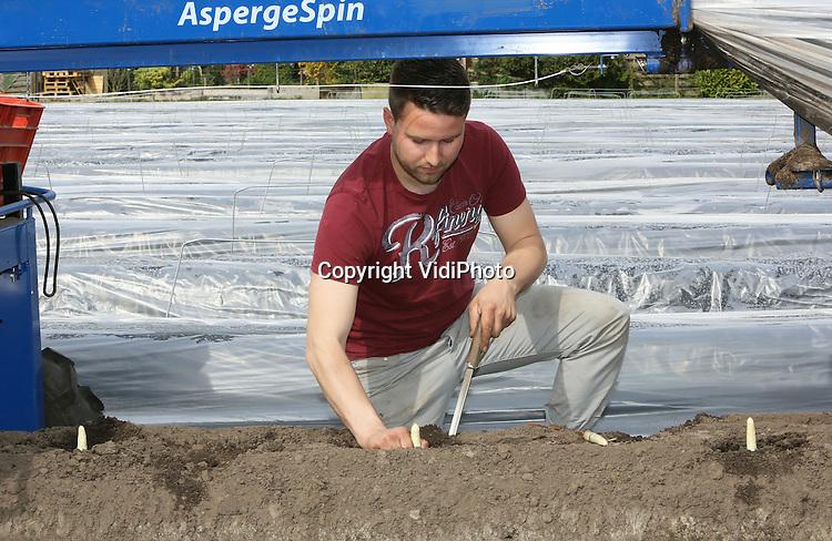 Foto: VidiPhoto<br /> <br /> HEERLE - Rob Luysterburg van Luysterburg Agrifruit BV in Heerle woensdag aan het werk in zijn bedrijf. Lysterburg heeft 12 ha. asperges, 20 ha. aardbeien en een boederijwinkel.