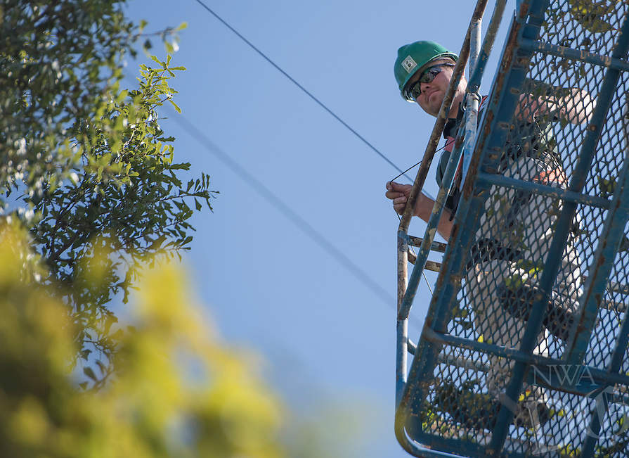 NWA Democrat-Gazette/J.T. WAMPLER Bentonville Parks and Recreation employee Jerome Todd strings para-cord around trees Tuesday Oct. 6, 2015 on a tree on the downtown square. Parks employees began the process of hanging holiday lights Monday, starting with the cord that will serve as anchor points for the strands of lights.<br /> For more photos go to nwadg.com/photos