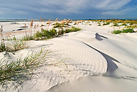 Florida, Ft George, Little Talbot Island State Park, Sand Dunes