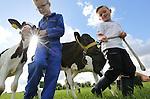 Foto: VidiPhoto<br /> <br /> ZETTEN - Wie boer wil worden moet eerst flink trainen. Vijf Holsteinkalfjes van de melkveehouders Aalberts en Den Hartog uit het Betuwse Zetten, vormen woensdag het oefenmateriaal van de boeren en boerinnen in sp&eacute;. In eerste instantie wordt getraind voor de fokveedag van 20 augustus in Beesd op landgoed Mari&euml;nwaerdt. De kinderen moeten de kalfjes op de juiste manier -en piekfijn gekleed- begeleiden tijdens de keuring voor een jury. Vanaf woensdag wordt er iedere dag geoefend met de kalfjes, want allemaal willen ze een prijs winnen. Aan de veekeuring op Mari&euml;nwaerdt nemen 120 melkkoeien deel en 21 kalfjes. Deze zogenoemde Dairy Fair is razend populair omdat deze tegelijk wordt gehouden met de bekende landgoedfair waar tienduizenden bezoekers uit het hele land op af komen. Doel van de veekeuring is kinderen van melkveehouders op jonge leeftijd vertrouwd laten raken met vee, en andersom, om het 'verwilderen' van melkvee te voorkomen. Melkveehouderijen worden steeds groter, waardoor boeren minder contact hebben met hun dieren. Veekeuringen zorgen er voor dat de dieren tammer worden, waardoor ongelukken met melkkoeien op het bedrijf kunnen worden voorkomen.