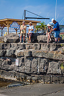 NOAA government officials and locals keeping eyes on Hawaiian monk seal, Monachus schauinslandi, basking at boat ramp, young male, critically endangered species, Honokohau Harbor, Kona Coast, Big Island, Hawaii, USA, Pacific Ocean
