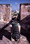 Cannon in San Juan NHS