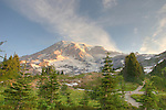 Alta Vista stop on the south side of Mt. Rainier panoramic walk.