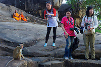 Asian Tourists and a cheeky monkey at Polonnaruwa-Mediaeval Capital City, Sri Lanka