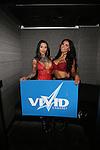 Vivid Cabaret New York Valentine's Week