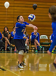 1 November 2015: Yeshiva University Maccabee Setter and Defensive Specialist Yael Ghelman, a Sophomore from Houston, TX, bumps against the Saint Joseph College Bears at SUNY Old Westbury in Old Westbury, NY. The Bears shut out the Maccabees 3-0 in NCAA women's volleyball, Skyline Conference play. Mandatory Credit: Ed Wolfstein Photo *** RAW (NEF) Image File Available ***