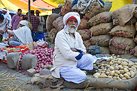 Sikh Indian man in Old Delhi at Daryagang fruit and vegetable market, India RESERVED USE - NOT FOR DOWNLOAD -  FOR USE CONTACT TIM GRAHAM